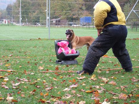 Mondioring Hundesport mit Handlungsfreicheit
