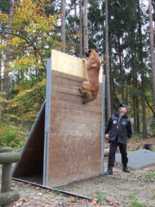 Mondioring Hund überspringt Hürde mit 2,65 Meter höhe